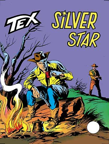 544e90b9e6a63048db57e4eb3fadd793.jpg--silver_star.jpg